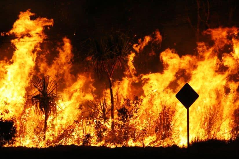 Sydney Bushfire Alert